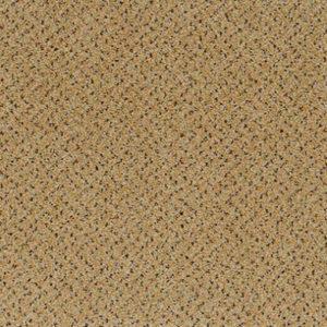 Carpete 502 - Civet