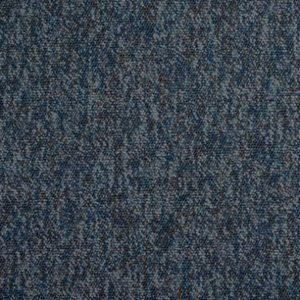 Carpete 407 – Delphinus
