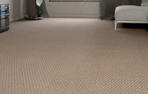 carpete4