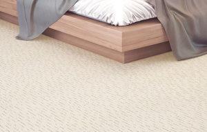 carpete5