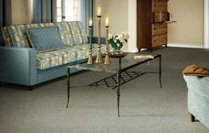 carpete6-1