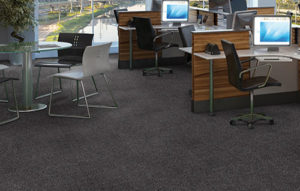 carpete8-1