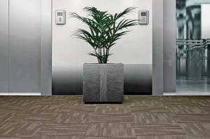 Carpete Instalado Equinox